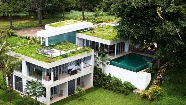 Конструкция дома с зеленой крышей